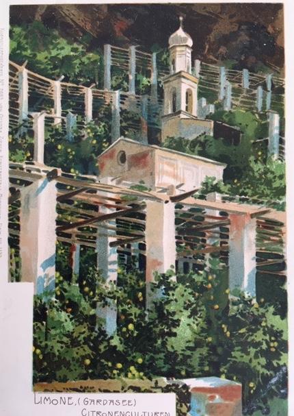 cartolina riproducente Limone, la chiesetta di San Rocco